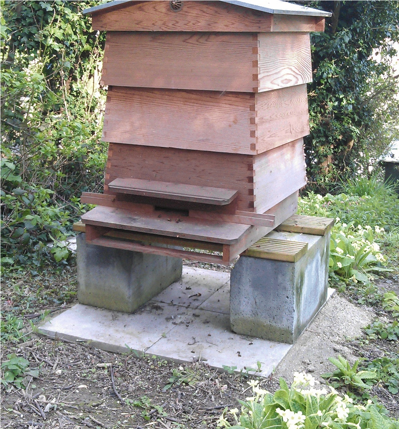pic of WBC hive on stand